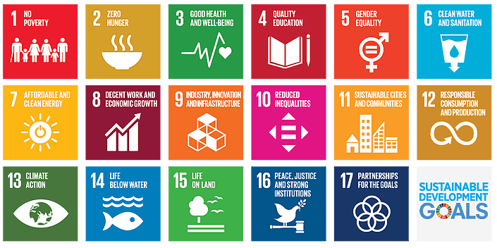 Sustainable Development Goals Icons
